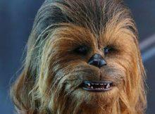 Hot Toys MMS 375 Star Wars : TFA – Chewbacca